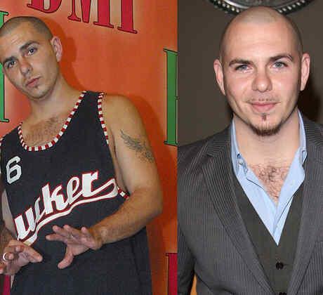 Pitbull collage