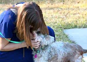 Mujer reencuentra a su perro