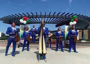 Crean taller intensivo de música mariachi en California